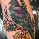 Pidgeon color tattoo